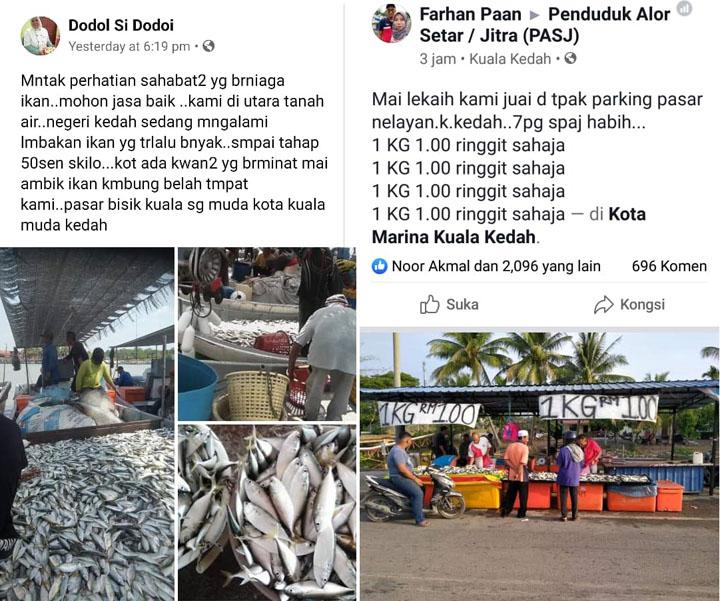 Ikan Kembung Segar Dijual Serendah RM1 Sekilogram