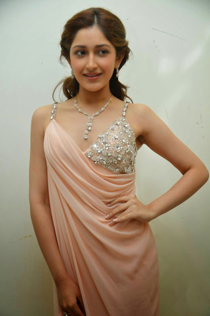 Sayesha%2B%252885%2529 - Sayesha Saigal Sexiest Images & Photo Gallery|Vanamagan Actress Hot Stills|