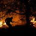 Ολονύχτια μάχη με τις φλόγες στην Εύβοια - Συνεχείς αναζωπυρώσεις, ενισχύονται οι άνεμοι