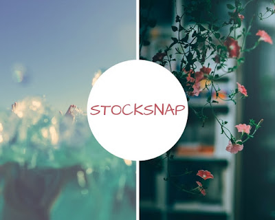 https://stocksnap.io