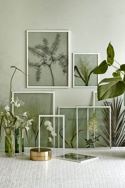 Decoration With Plants 8