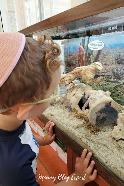 Southern California Kids Museum