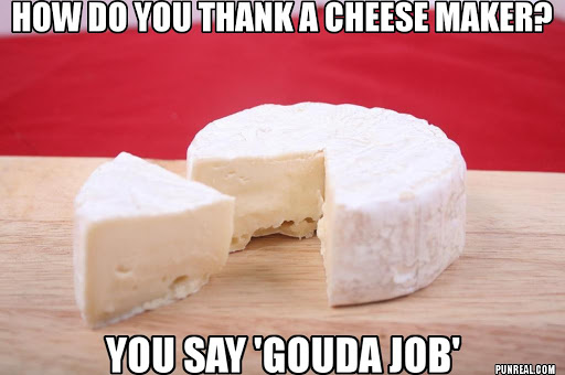 Gouda job