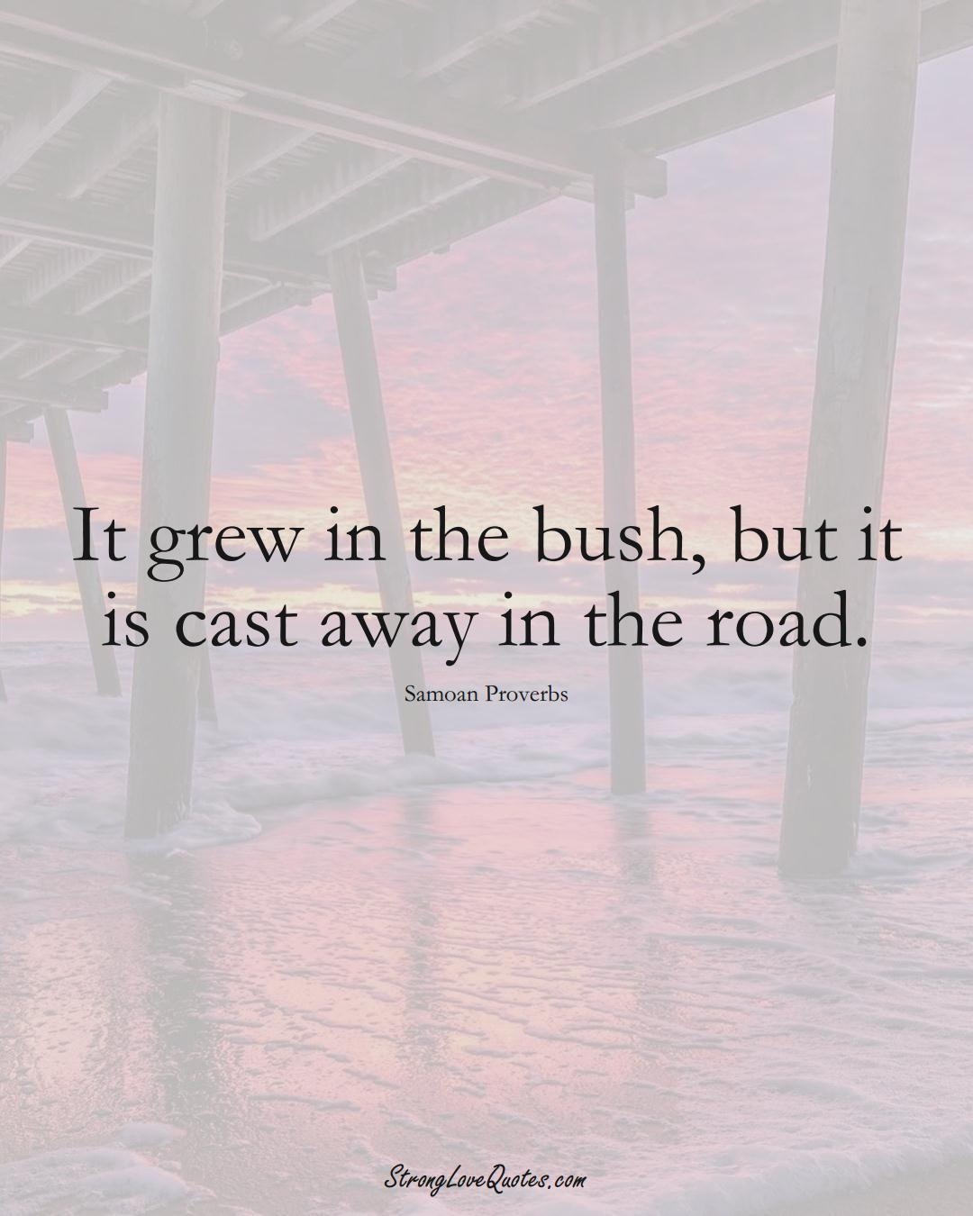 It grew in the bush, but it is cast away in the road. (Samoan Sayings);  #AustralianSayings