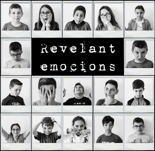 REVELANT EMOCIONS: L'EXPOSICIÓ