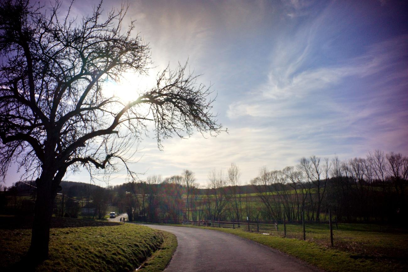 Krasses Fix-Fokus Objektiv #7- Nachmittagsspaziergang