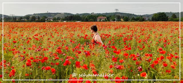Katharina steht im Mohnfeld in Radebeul