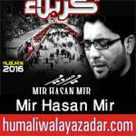 http://www.humaliwalayazadar.com/2012/10/mir-hasan-mir-nohay-2010-2013.html