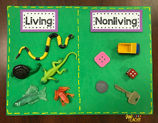 Living & Nonliving Sorting Mat, www.JustTeachy.com