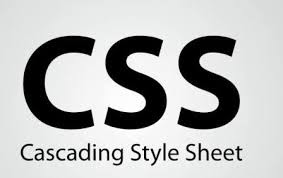 CSS Part 1 : Cara menginputkan Kode CSS ke dalam HTML