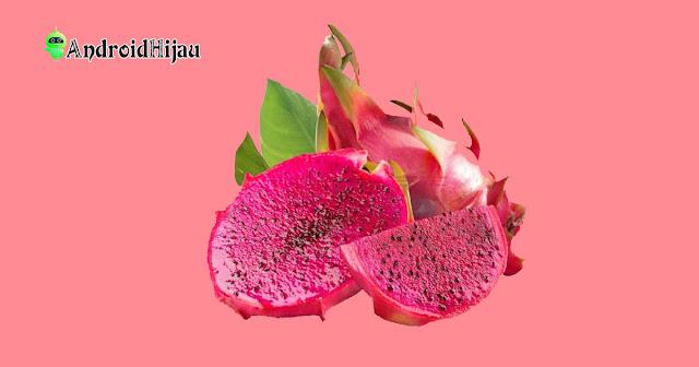 manfaat mengkonsumsi buah naga merah, kandungan gizi buah naga merah, mengobati buah naga merah
