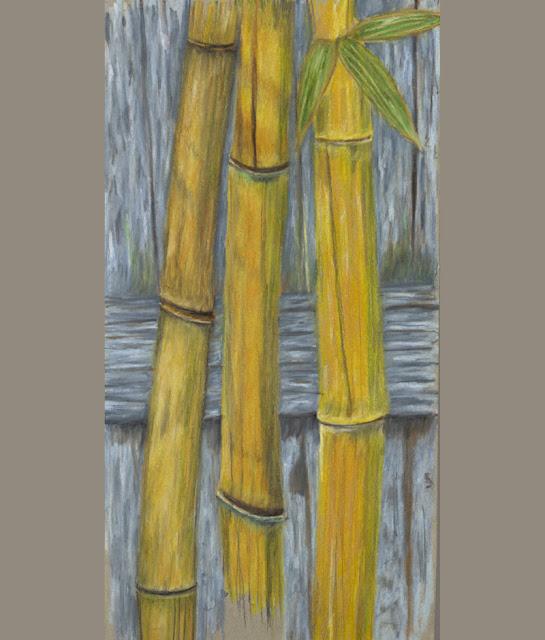 Garden drawing -- bamboo