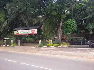 Bisnis, Rumah Makan, Pondok Gurame, Depok, Rumah Makan Depok, Rumah Makan Pelopor Di Depok