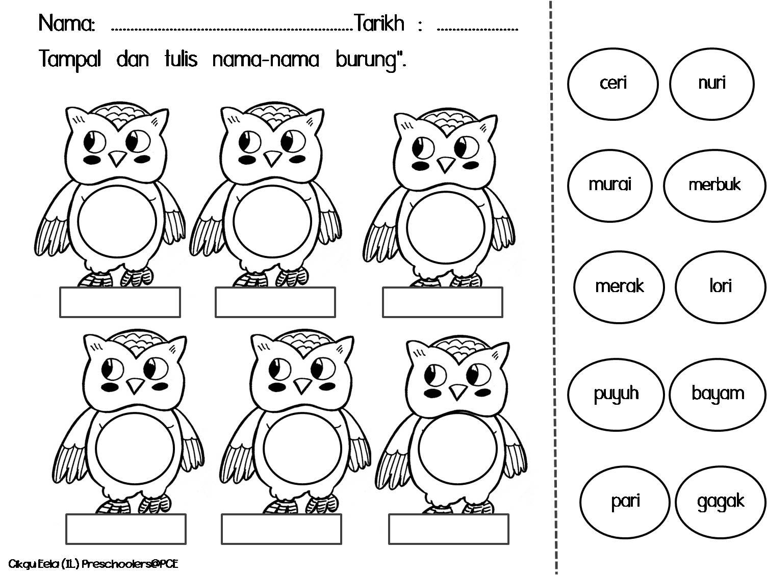 Cikgu Eela Il Preschoolers Pce Lembaran Kerja Burung