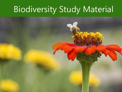 Biodiversity Quiz Study in Hindi