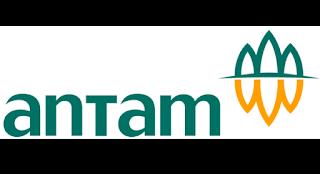 PT ANTAM (Persero) Tbk (ANTAM)