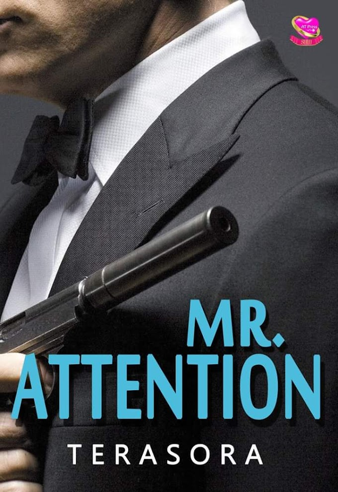Novel : Mr. Attention