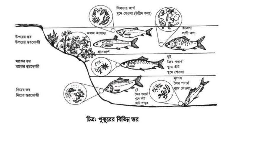 Class 9 Agriculture Assignment Answer 2021 (14th Week)