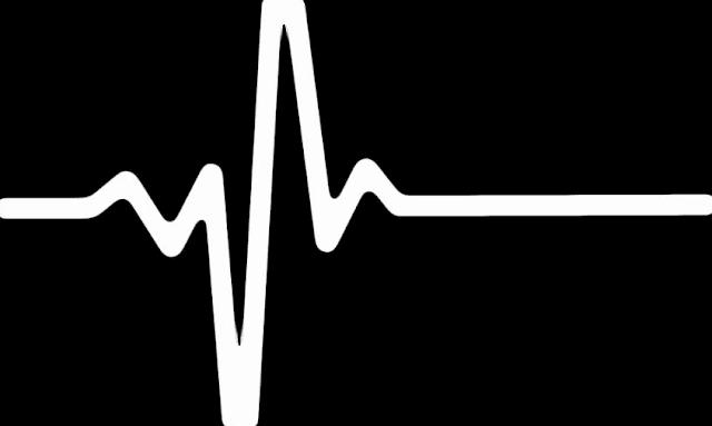 Jenis Tanaman Obat Herbal Mengatasi Sakit Jantung