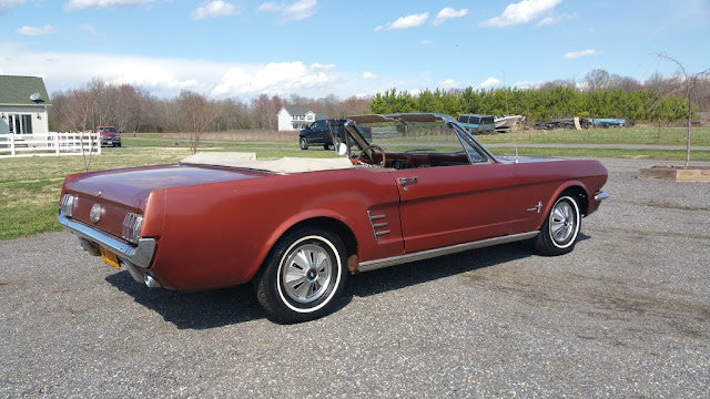1966 Ford Mustang Pictures Gallery