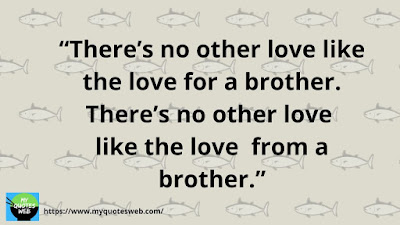 360+ Brother Quotes - Cute Brother Quotes And Sayings
