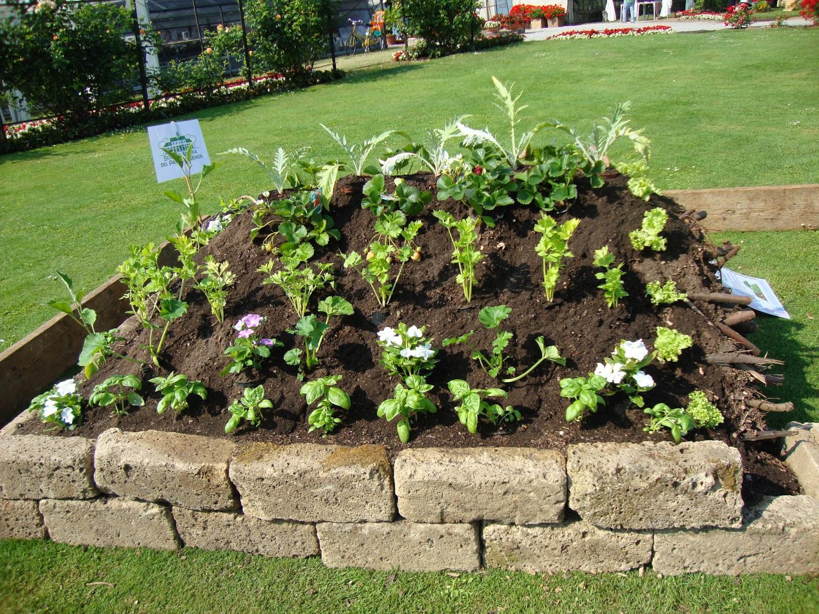 Un piccolo giardino in citt dal festival degli orti l - L orto in giardino ...