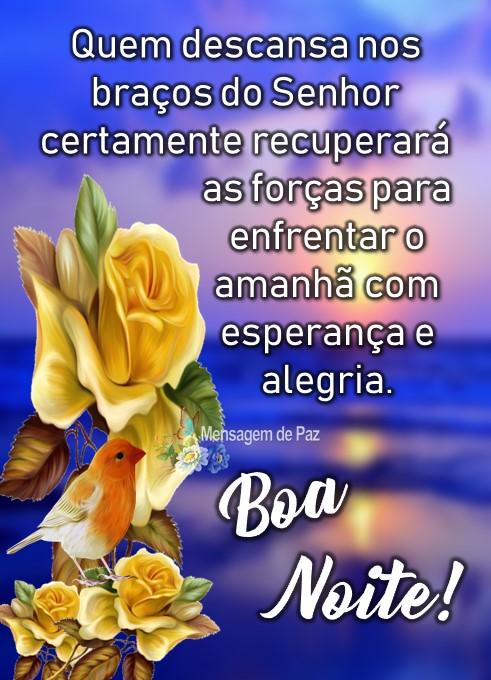 Quem descansa   nos braços do Senhor   certamente recuperará   as forças para enfrentar  o amanhã com esperança e alegria Boa Noite!