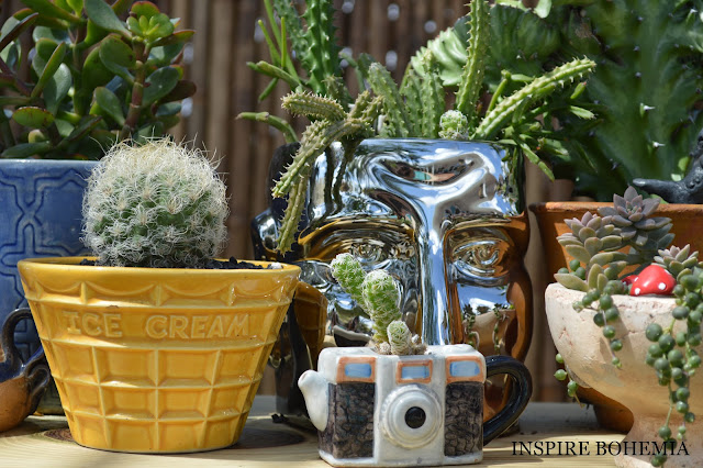 Designer Cactus and Succulent Event Planters Garden Design Inspire Bohemia - Miami and Ft. Lauderdale Succulent Business