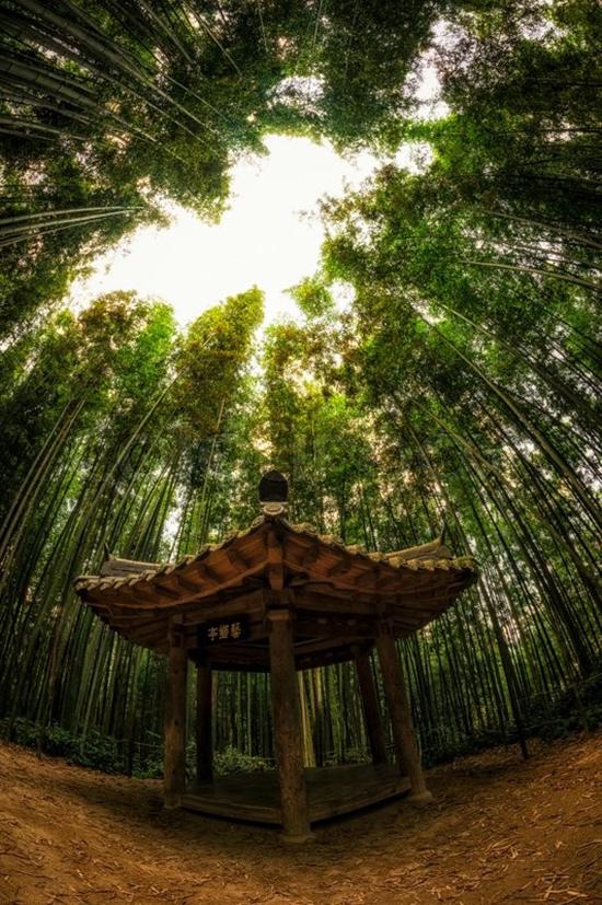 kota bambu Damyang