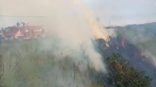 Perbukitan Kawasan Danau Toba di Humbahas Terbakar