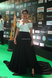 Amyra Dastur in Off Shoulder Deep neck  at IIFA Utsavam Awards 2017  Day 2 at