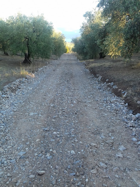 Αγροτικός δρόμος στην Πελασγία! Ιδιωτικός ή κοινόχρηστος;