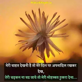 Hindi romantic love shayari for wife