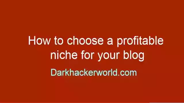 Choose a profitable niche for your blog