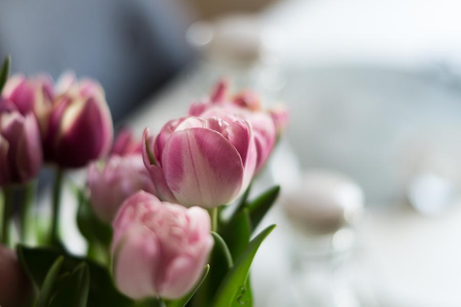 Blog + Fotografie by it's me! | fim.works | Die letzten Tulpen für dieses Jahr