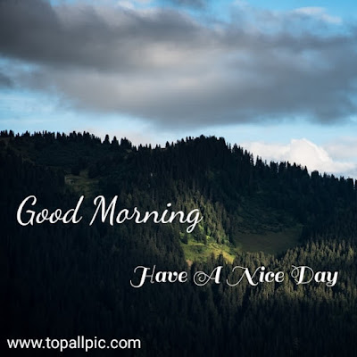good morning images love