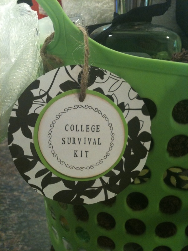 Just For You By Jessica College Dorm Survival Kit