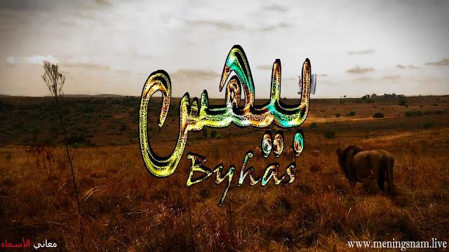 معنى اسم بيهس وصفات حامل هذا الاسم Bayhs