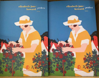 """Con Fazi Editore vinci gratis copie del romanzo """"Perdersi"""" di Elizabeth Jane Howard"""