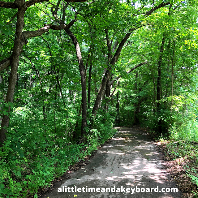 Trails are both paved and natural at Tekakwitha Woods Forest Preserve.