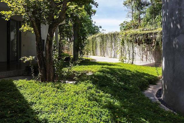 Ngôi nhà tuyệt đẹp, siêu độc đáo 'nuốt' trọn 5 cây gỗ quý ở Nghệ An lên báo Tây 3