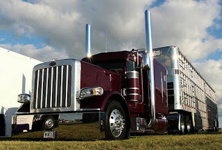 Peterbilt 379 With Trailer Red Hearts Paint