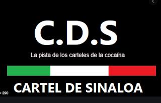 La pista de los carteles de la cocaína