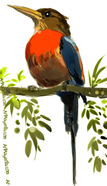 Paradise Kingfisher is a bird drawing by Artmagenta