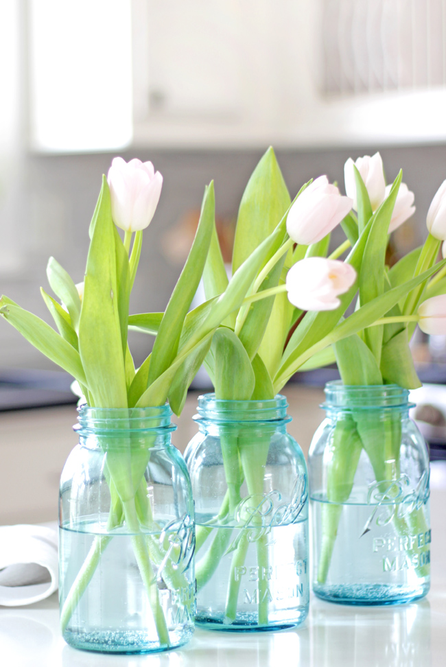 white tulips in blue mason jars