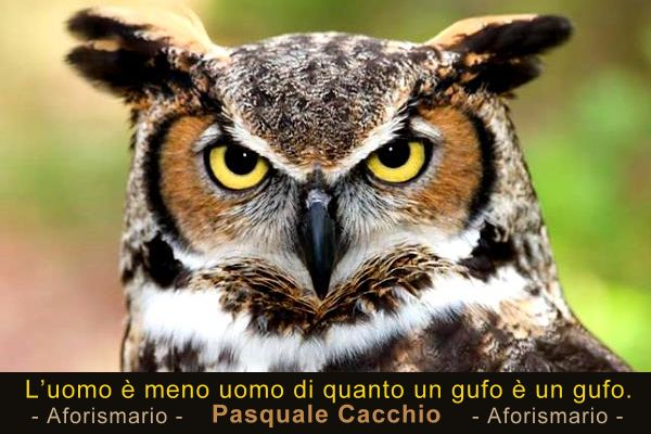 Preferenza Aforismario®: Gufi e Civette - Aforismi, frasi e proverbi ZK52