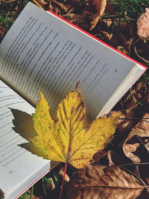 Przeczytane w Miesiącu - Wrzesień