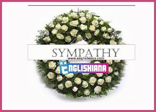5 Contoh Dialog Bahasa Inggris Expressing Sympathy dan Artinya