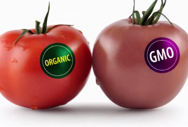 Armenia marcará productos con OMG