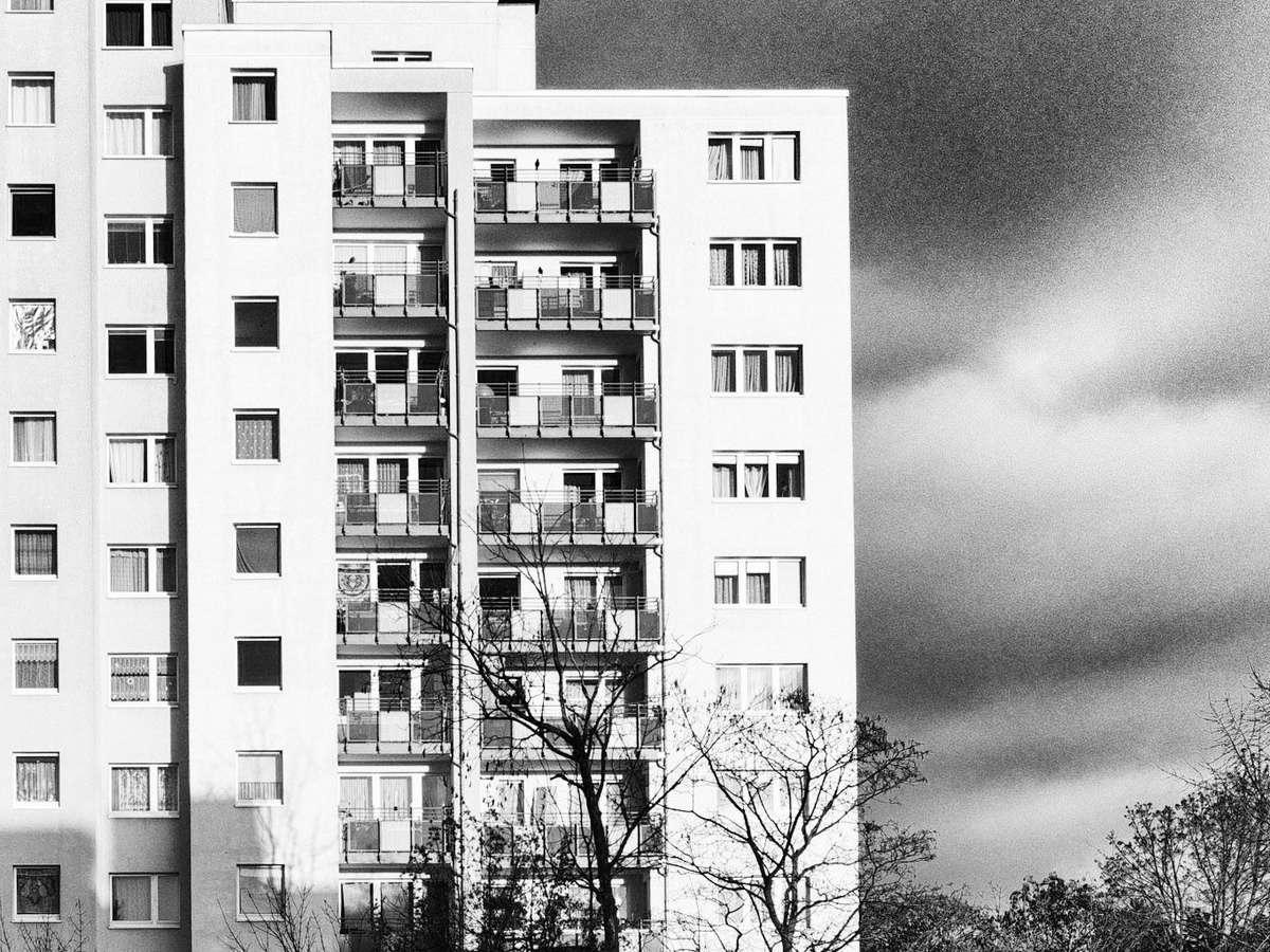 Размер требований участника долевого строительства к застройщику в банкротстве